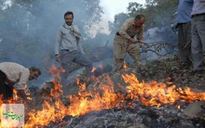آتش-خطای-انسانی-بلای-جان-جنگل-های-مازندران