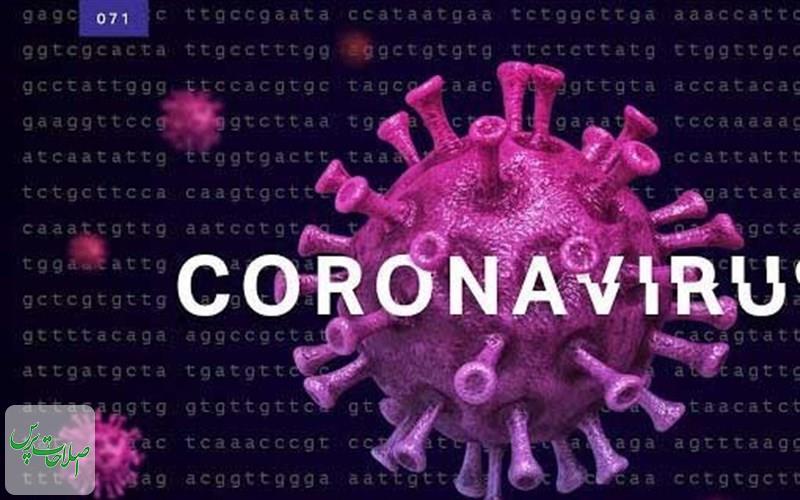 نتیجه-نهایی-آزمایش-دو-مورد-مرگ-بیمار-مشکوک-به-کروناویروس-ساوه-مثبت-اعلام-شد